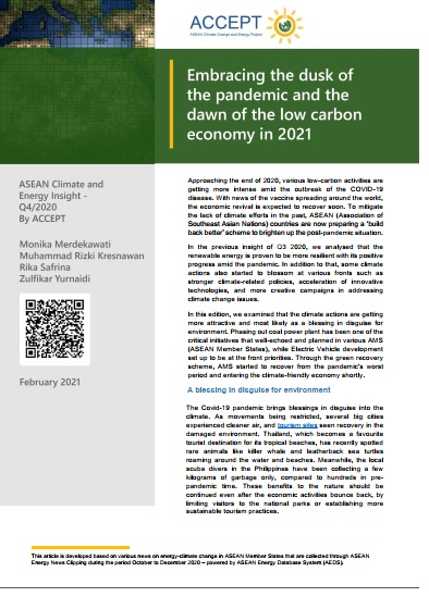 Embracing the Dusk of the Pandemic and the Dawn of the Low Carbon Economy in 2021